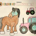 C2, Sullivan Warner, age 4
