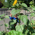 C3, Mason Scargall, age 5